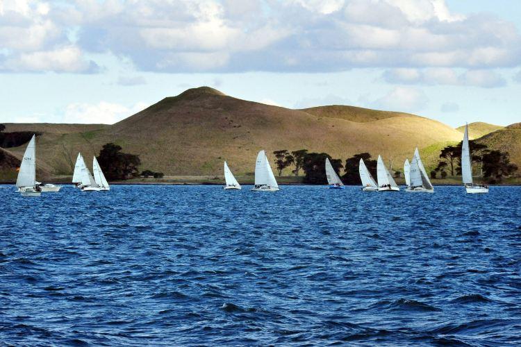 Waiheke Island4