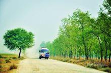旅行,路过的村子