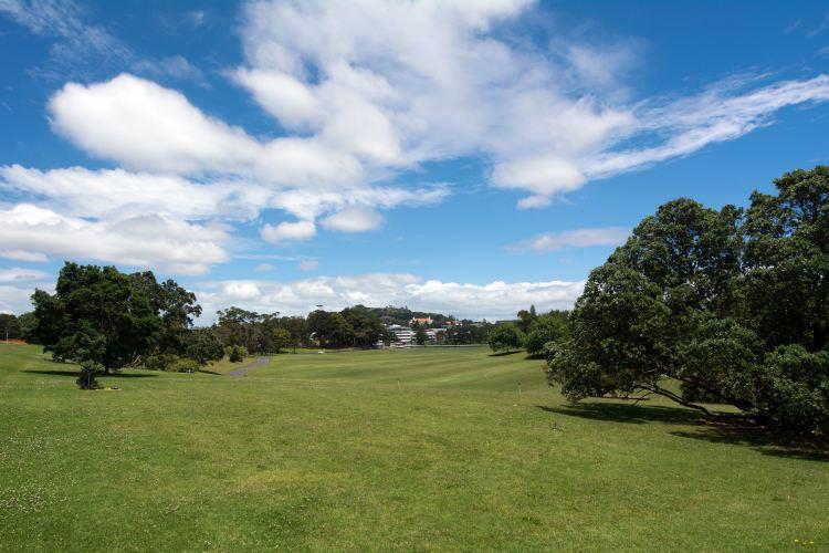 Auckland Domain4