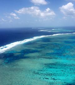 [墨尔本游记图片] 2015年国庆澳大利亚悉尼+墨尔本自驾+大堡礁阿金考特外堡礁13天精华游