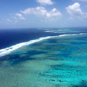 凯恩斯游记图文-2015年国庆澳大利亚悉尼+墨尔本自驾+大堡礁阿金考特外堡礁13天精华游