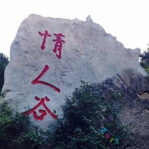 芦芽山情人谷旅游景点攻略图