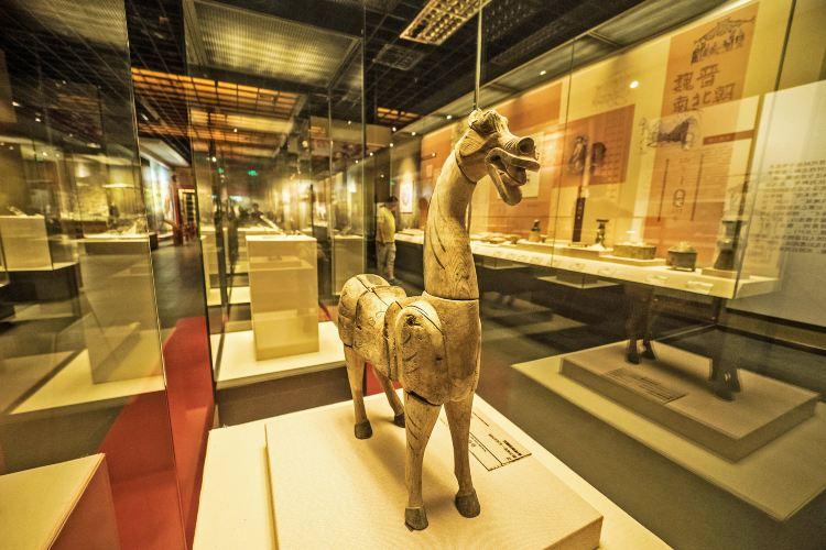 칭하이 성 박물관2