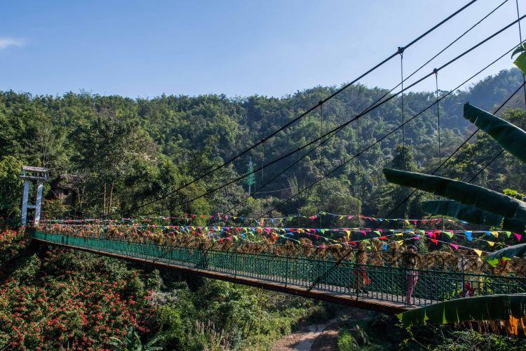 Xishuangbanna Primeval Forest Park1