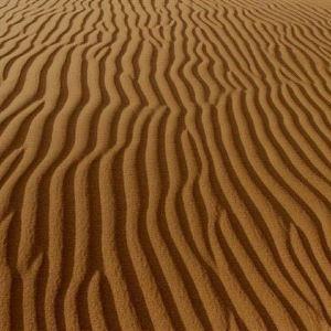 金沙湾生态旅游区旅游景点攻略图