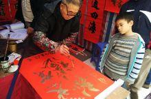 广州过年,花城看花!行花街,看花灯,逛庙会,广州的新年活动都在这里~