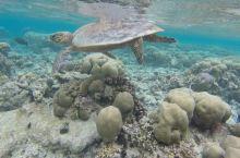外语盲百日六国游第二十八天:马尔代夫 班度土岛