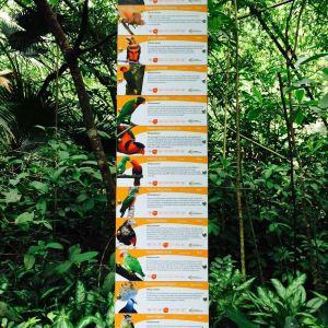 莫尔兹比港自然公园旅游景点攻略图