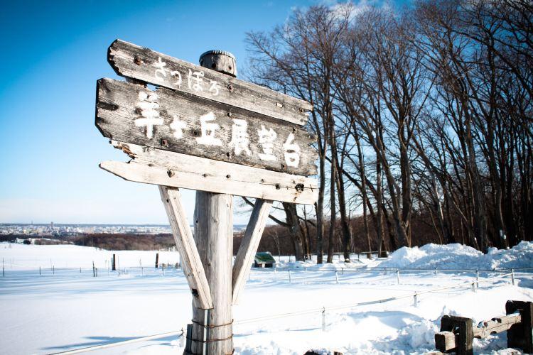 Sapporo Hitsujigaoka Observation Platform1