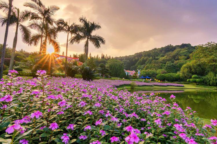 Yuntai Garden2