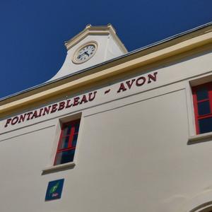 枫丹白露游记图文-周末去巴黎--枫丹白露宫和圣米歇尔山