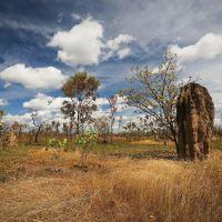 卡卡杜国家公园图片