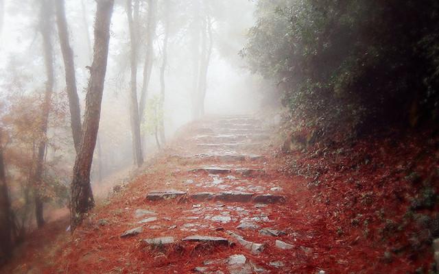 #我的2015#秋•雨•游常熟,轻奢铂尔曼