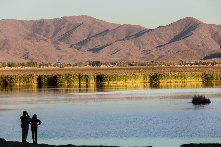 可哥蘇裡湖2