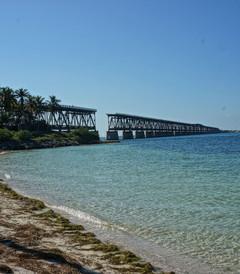 [佛罗里达州游记图片] 佛罗里达的阳光与橙子