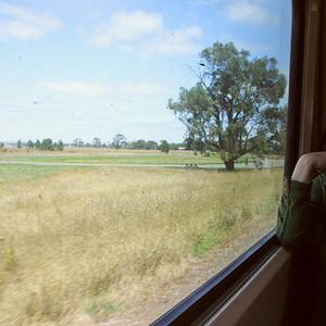 怀特岛游记图文-澳大利亚9日游,乘着公交捉星去
