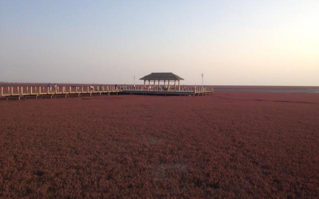辽东滨海休闲自驾游:红海滩、笔架山、兴城古城、滨海大道