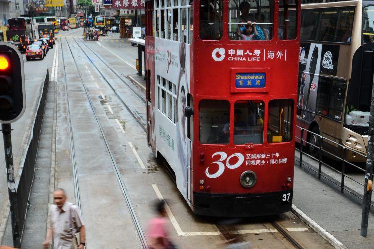 香港電車叮叮車1