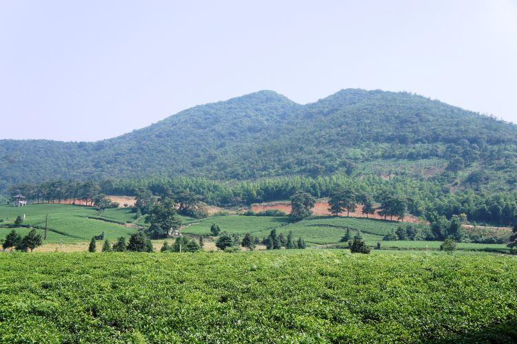 Longchi Mountain