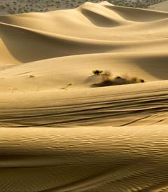 [喀纳斯游记图片] 22天自驾环游北疆,穿越南疆