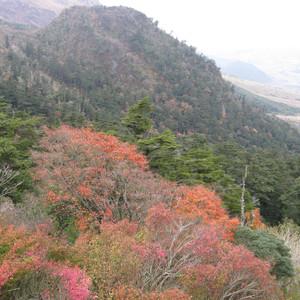 岛原市游记图文-日本游回顾  第一回  九州长崎彩都之旅