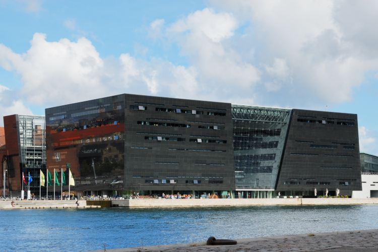 Det Kongelige Biblioteks Have1