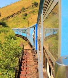 [康提游记图片] 做一个浪漫的旅行者---斯里兰卡(大波美图来袭)