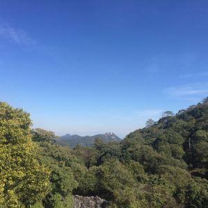 大黑山森林公园旅游景点攻略图