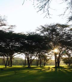 [肯尼亚游记图片] 自然的天堂----肯尼亚