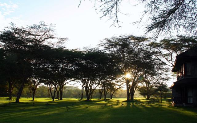 自然的天堂----肯尼亚