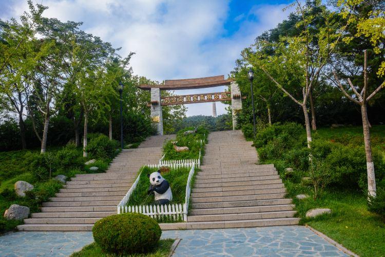 Liugongdao National Forest Park1