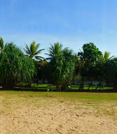 [科伦坡游记图片] 【斯里兰卡初印象,一周走遍十大震撼美景,圆母亲一个南亚梦】