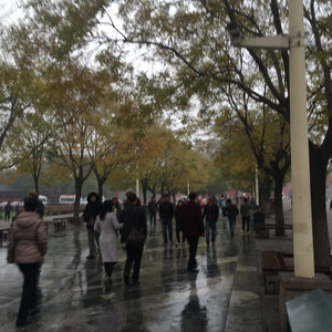 沧州游记图文-难得的北京之行