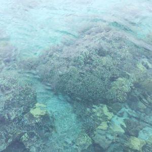 玛玛努卡群岛旅游景点攻略图
