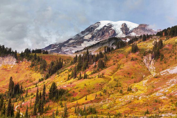 Mount Rainier National Park3