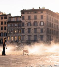 [佛罗伦萨游记图片] 曾经的辉煌,现在的迷人,翡冷翠