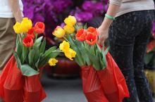 #春节在路上#2016番禺迎春花市开,好运自然来