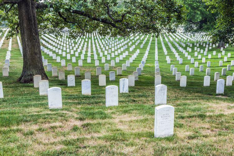 Arlington National Cemetery3