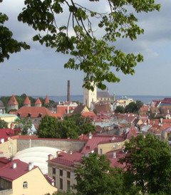 [塔林游记图片] 袖珍古城——塔林二日自由行——波罗的海上的明珠