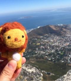 [南非游记图片] 【南非】去彩虹的尽头看看海