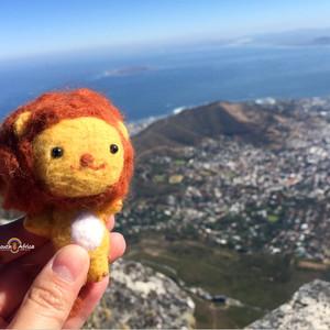 比勒陀利亚游记图文-【南非】去彩虹的尽头看看海