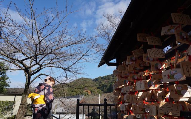 人均3500玩转6天5夜日本自由行名古屋-京都-大阪(内含详细药妆美食攻略)