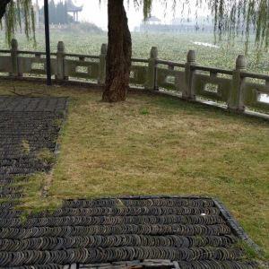 莲池禅院旅游景点攻略图