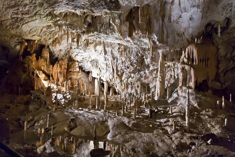 Postojnska Caves1