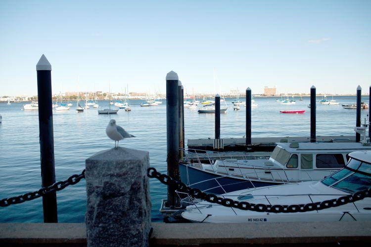 Boston Bay4