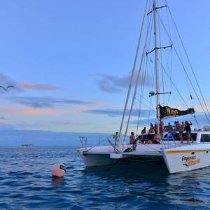 凯恩斯游记图文-奇幻大堡礁航海潜水巡游记