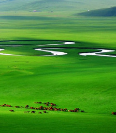 [额尔古纳游记图片] 走遍东北自驾游系列之一——阿尔山、满洲里、呼伦贝尔大草原、大兴岭自驾游详细路线和超实用攻略