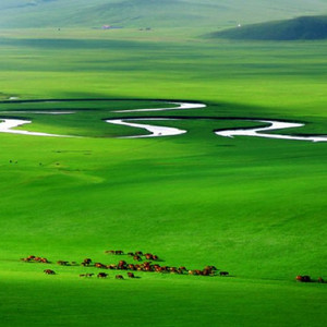 齐齐哈尔游记图文-走遍东北自驾游系列之一——阿尔山、满洲里、呼伦贝尔大草原、大兴岭自驾游详细路线和超实用攻略