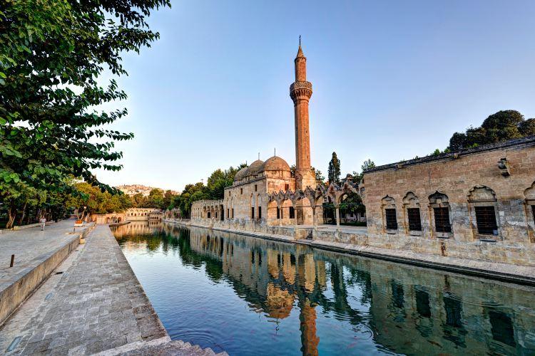 Rizvaniye Mosque4