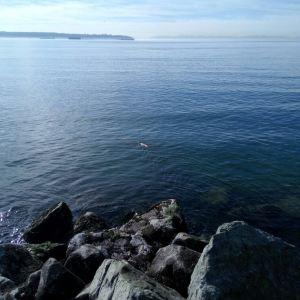 西温哥华海堤旅游景点攻略图